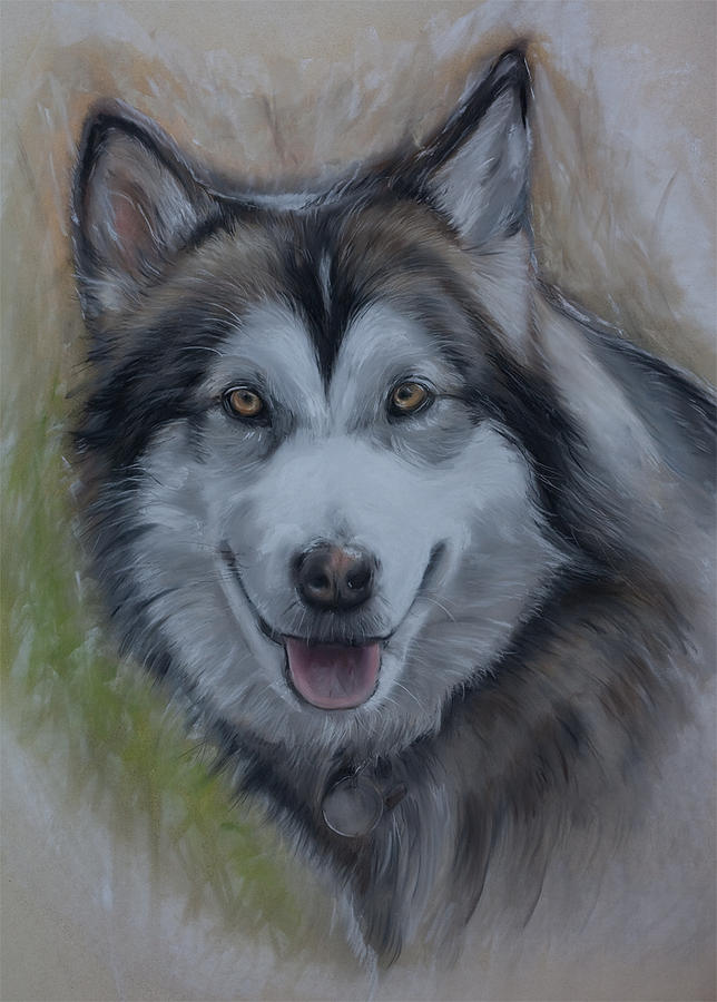 Pastels Pastel - Pastel Wolf Shiya by Barry  Miller