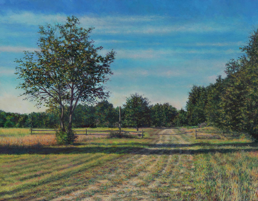 Pastoral Painting - Pastoral Off Poplar Hill Road by David P Zippi