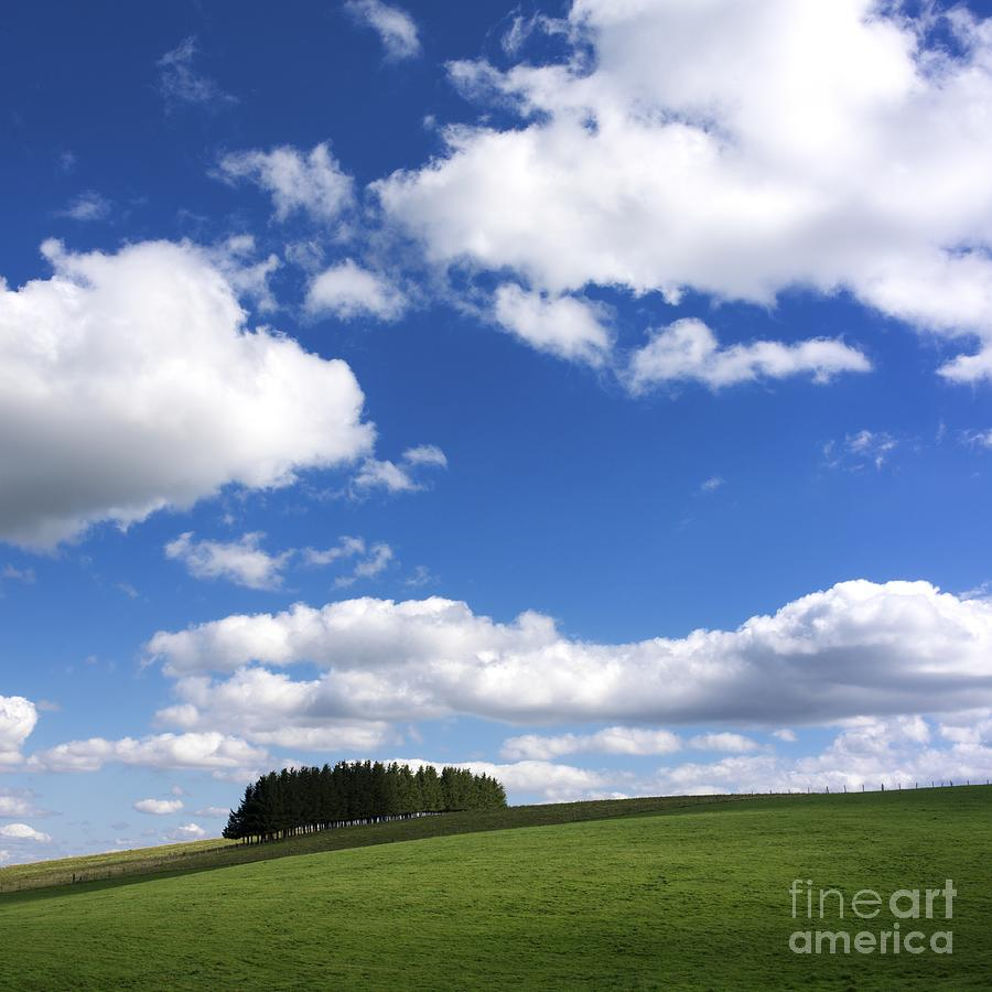 Alignment Photograph - Pasture In Auvergne by Bernard Jaubert