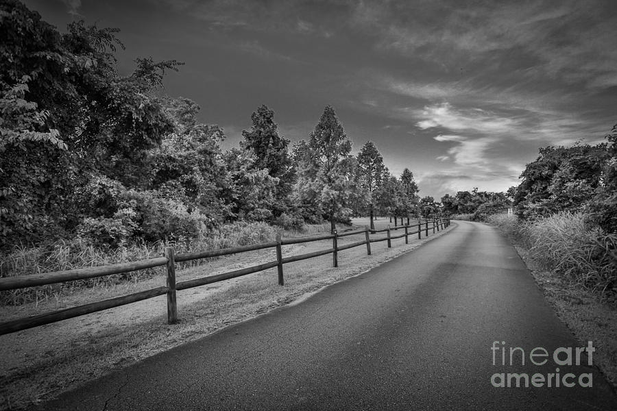 Landscape Photograph - Path - Black and White by Mina Isaac
