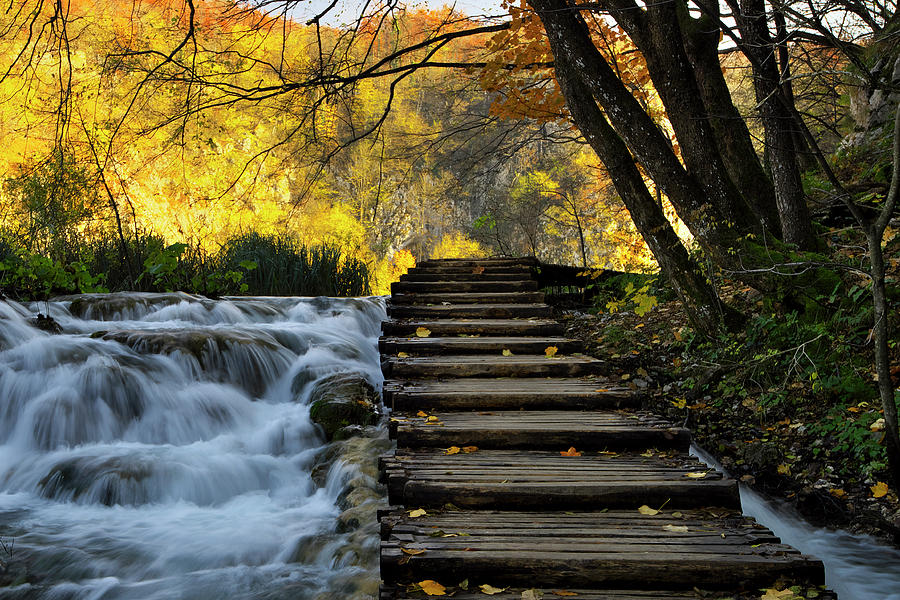Plitvice Photograph - Path in Plitvice by Ivan Slosar