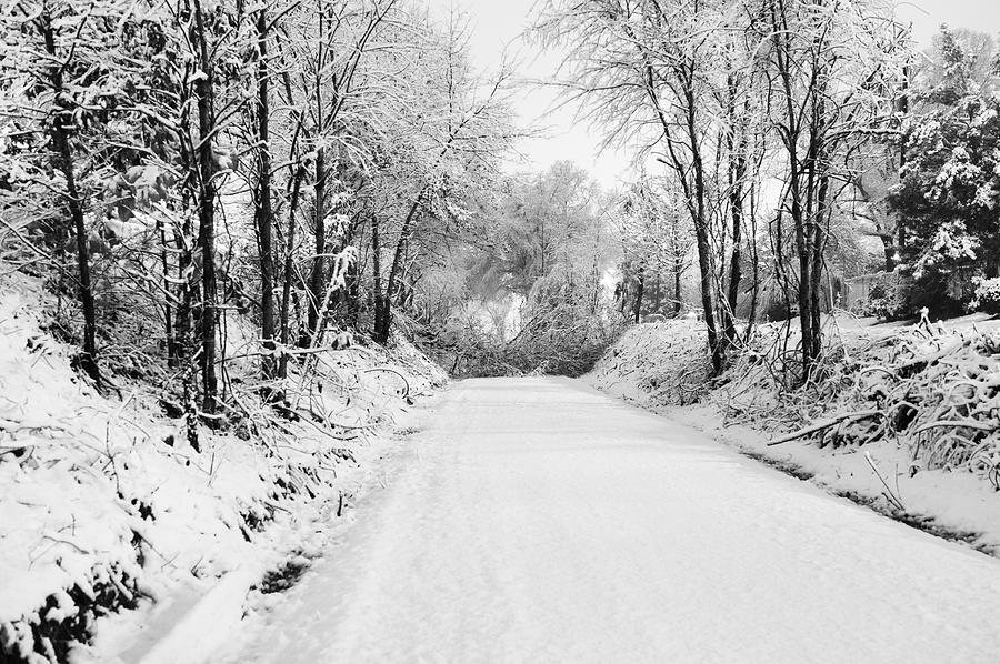 Snow Photograph - Path In The Snow by Michelle Shockley