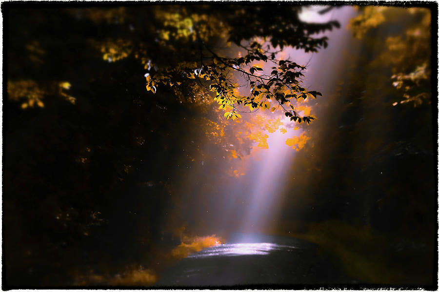 Sunrays Photograph - Path Less Traveled by Garett Gabriel
