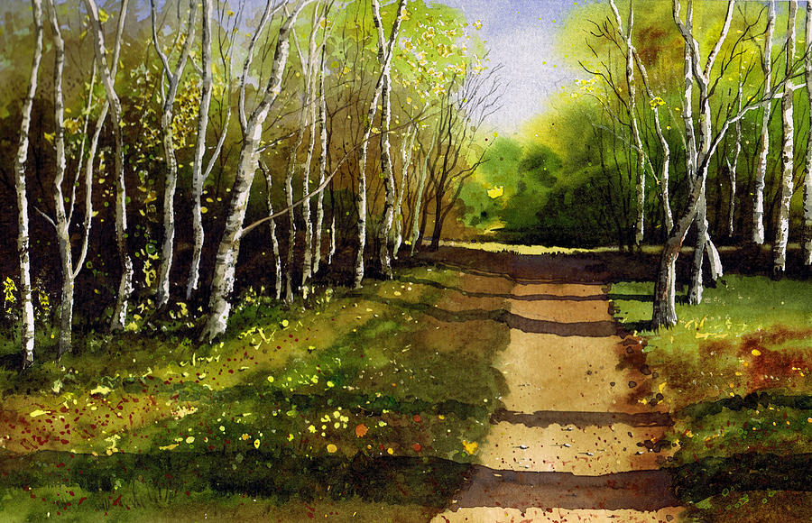 Woodland Painting - Path Through Silver Birches by Paul Dene Marlor