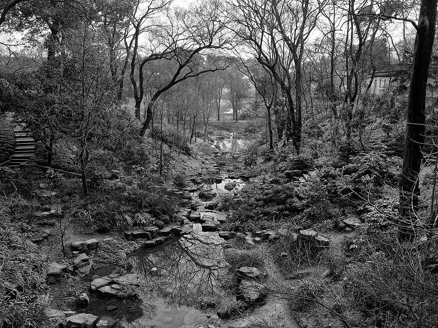 Path Through the Stream by Richard Lund