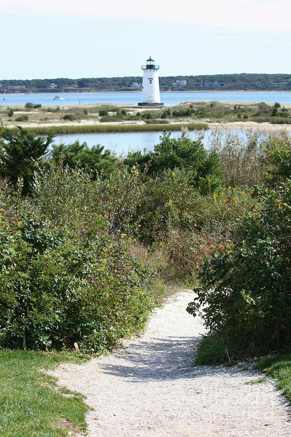 Martha's Vineyard Photograph - Path To Edgartown Lighthouse by Carol Groenen