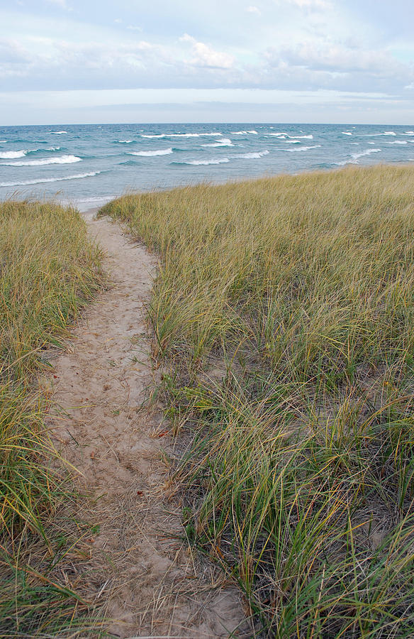 Bear Photograph - Path to the Beach by Twenty Two North Photography