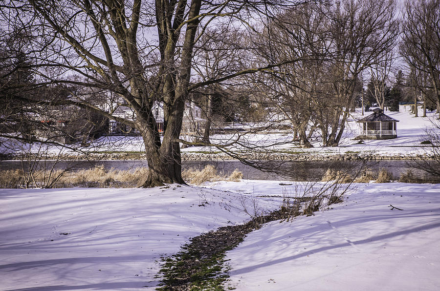 Winter Scene Photograph - Path To The River by Anne Witmer