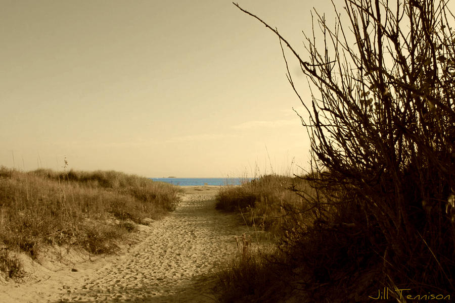 Landscape Photograph - Path To The Sea by Jill Tennison