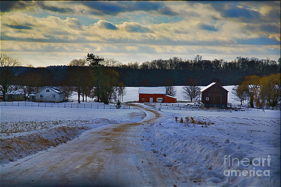 Farm Photograph - Path Ways by Robert Pearson