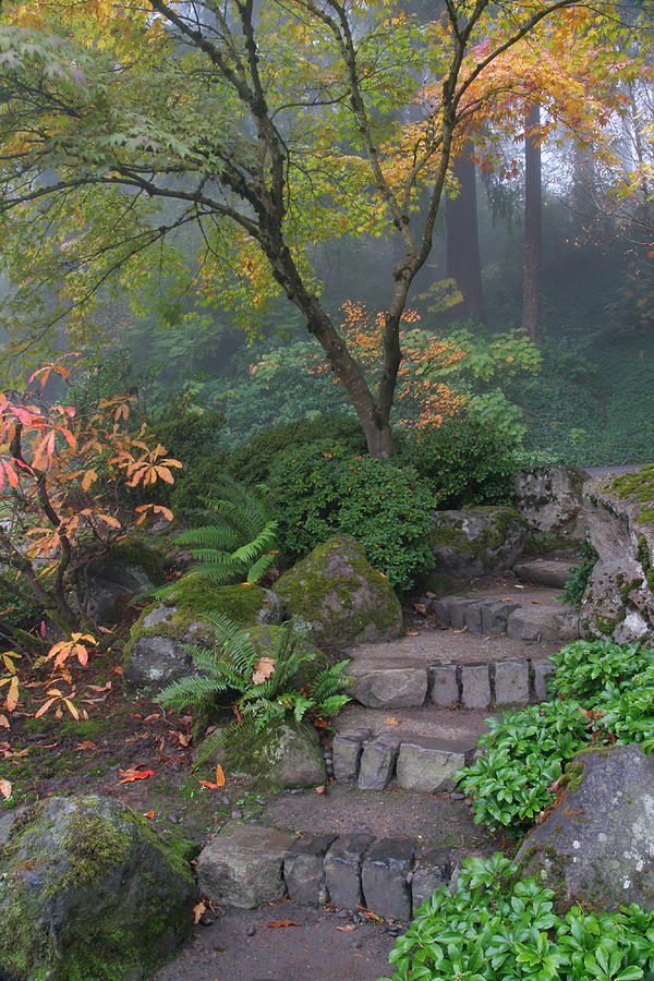 Pnw Photograph - Pathway To Serenity by Wes and Dotty Weber