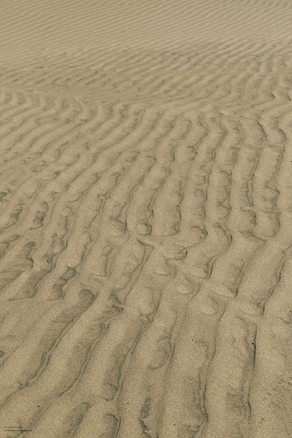 Sand Photograph - Pathways  by Hany J