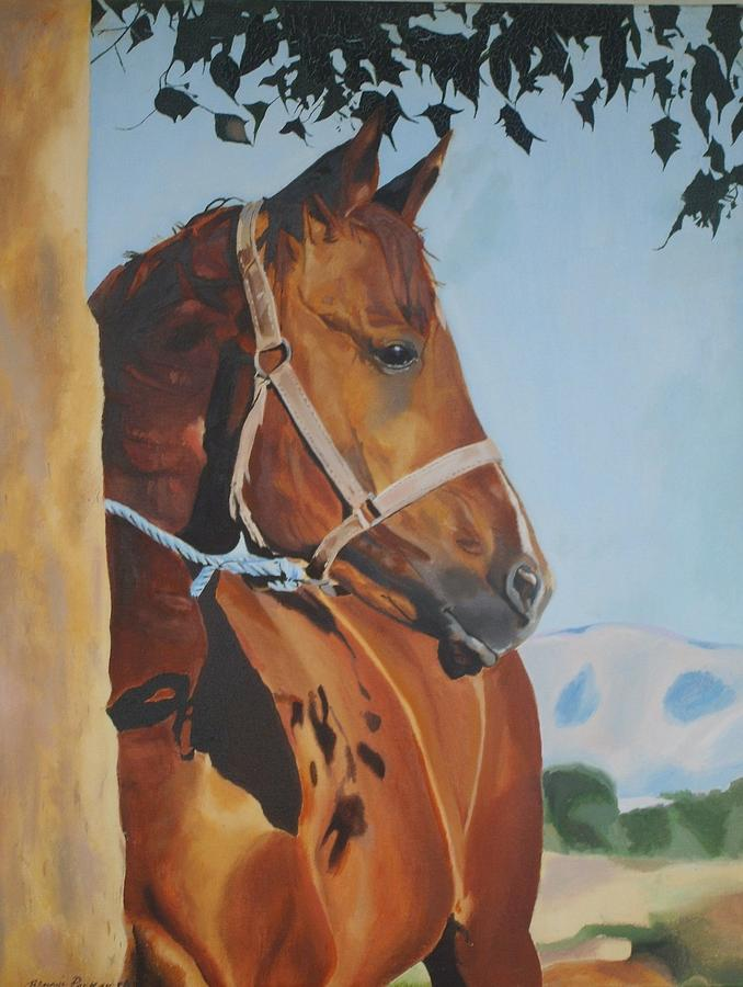 Horse Painting - Patience by Bennie Parker