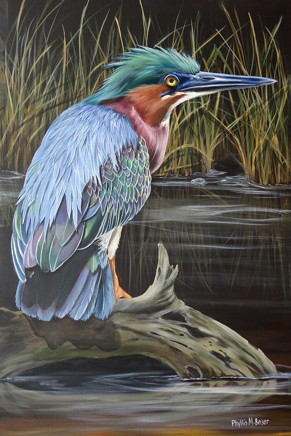 Green Heron Painting - Patience by Phyllis Beiser