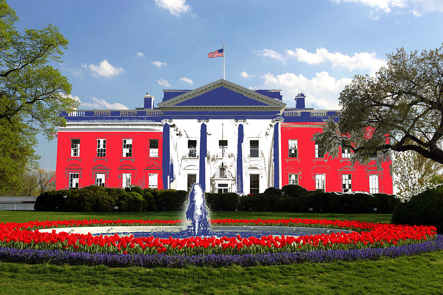Patriot In The White House Photograph