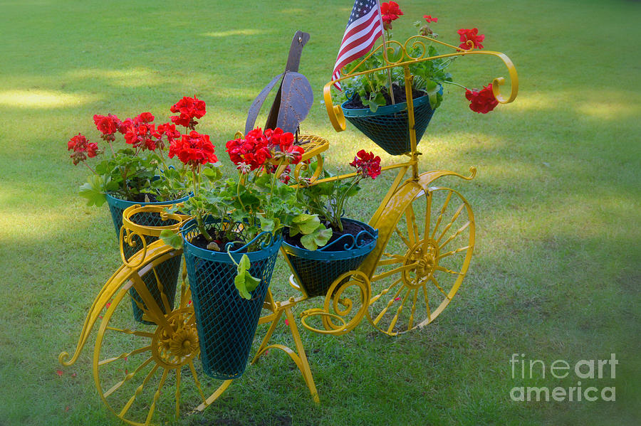 Garden Photograph   Patriotic Garden Decor By Tanya Searcy