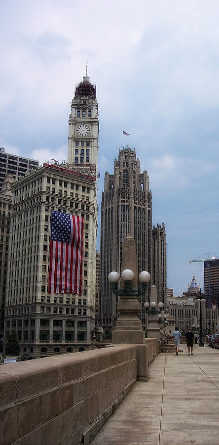 Chicago Photograph - Patriotic View by Donna Blackhall