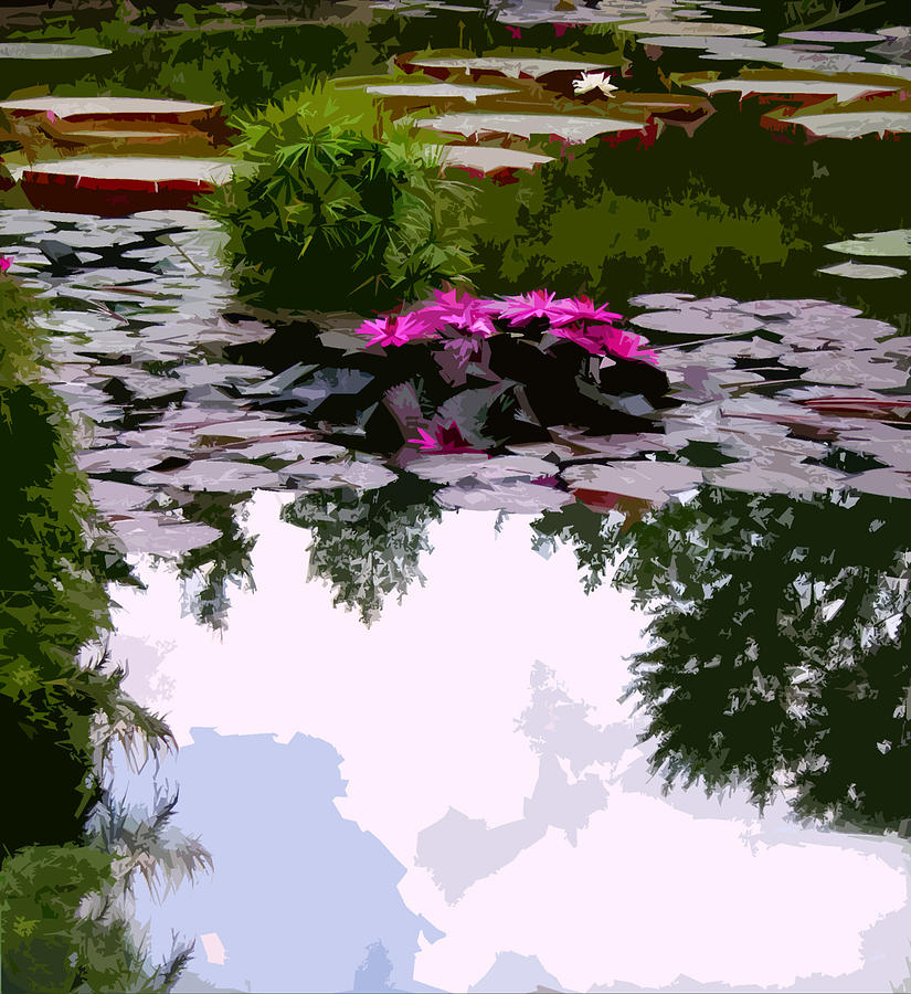 Water Lilies Photograph - Patterns Of Peace by John Lautermilch