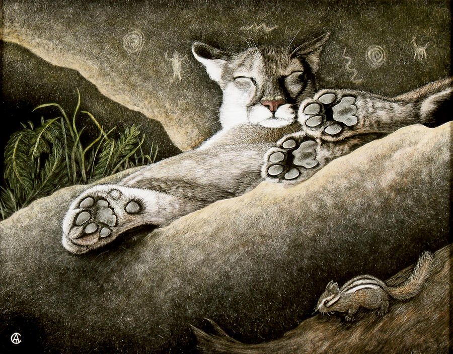 Paws for Thought by Angie Cockle