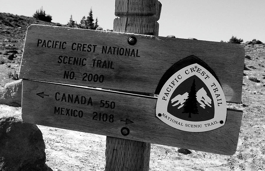Pacific Crest Trail Photograph - Pct Scenic Trail by David Lee Thompson