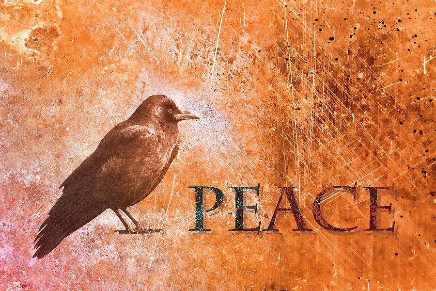 Peace Photograph - Peace Greeting Card by Carol Leigh