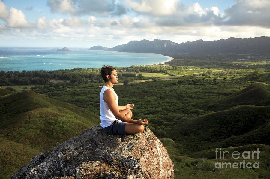 Activity Photograph - Peace On A Hillside by Brandon Tabiolo - Printscapes
