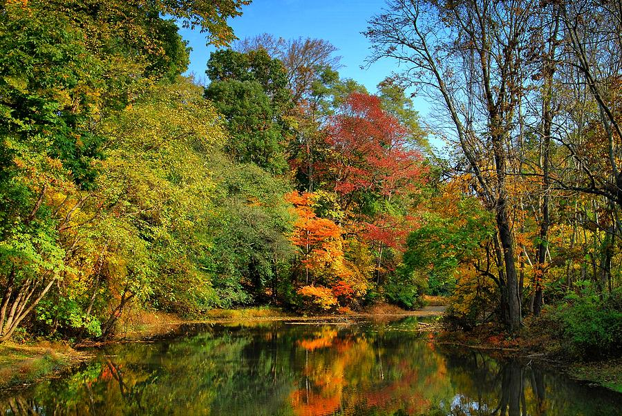 Autumn Photograph - Peaceful Calm - Allaire State Park by Angie Tirado