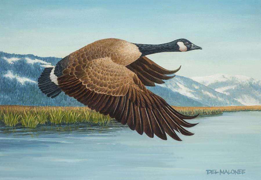 Peaceful Flight by Del Malonee