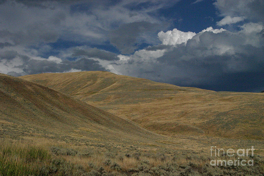 Yellowstone National Park Photograph - Peaceful Intensity by Katie LaSalle-Lowery