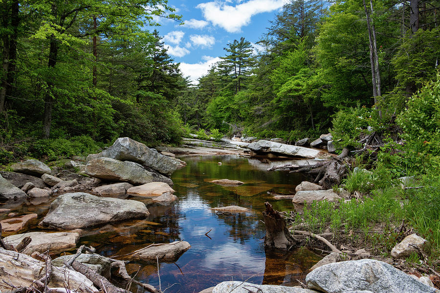 Stream Photograph - Peaceful Morning On The Peterskill by Jeff Severson