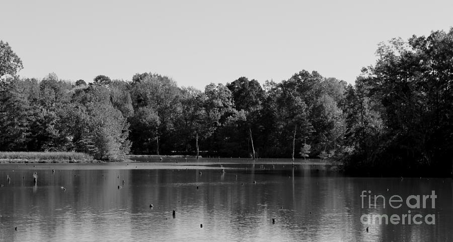 Alabama River Photograph - Peaceful River by Kimberly Saulsberry