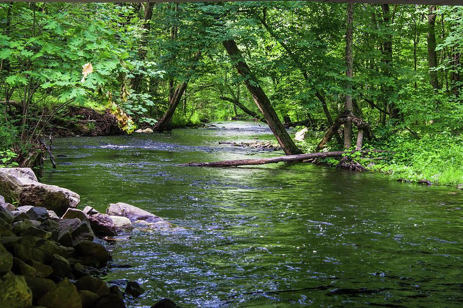 Peaceful Stream by Robert McKay Jones