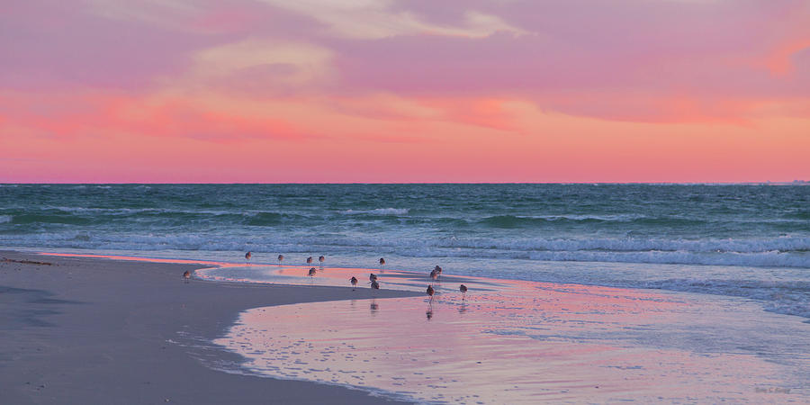 Sunset Photograph - Peaceful Witnesses  by Betsy Knapp