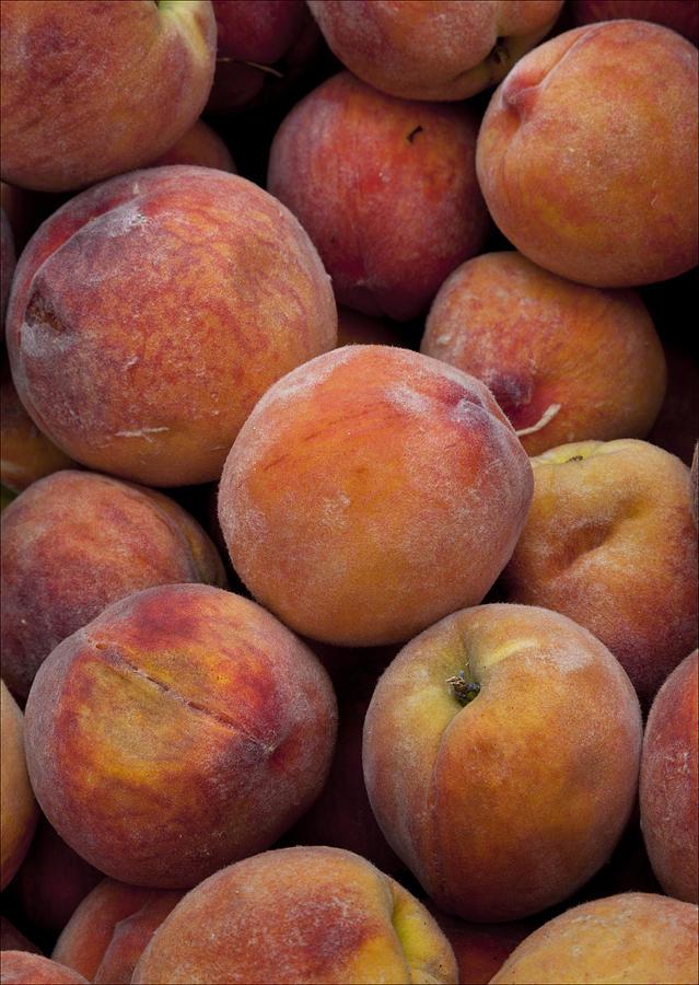 Peaches Photograph - Peaches 1 by Robert Ullmann