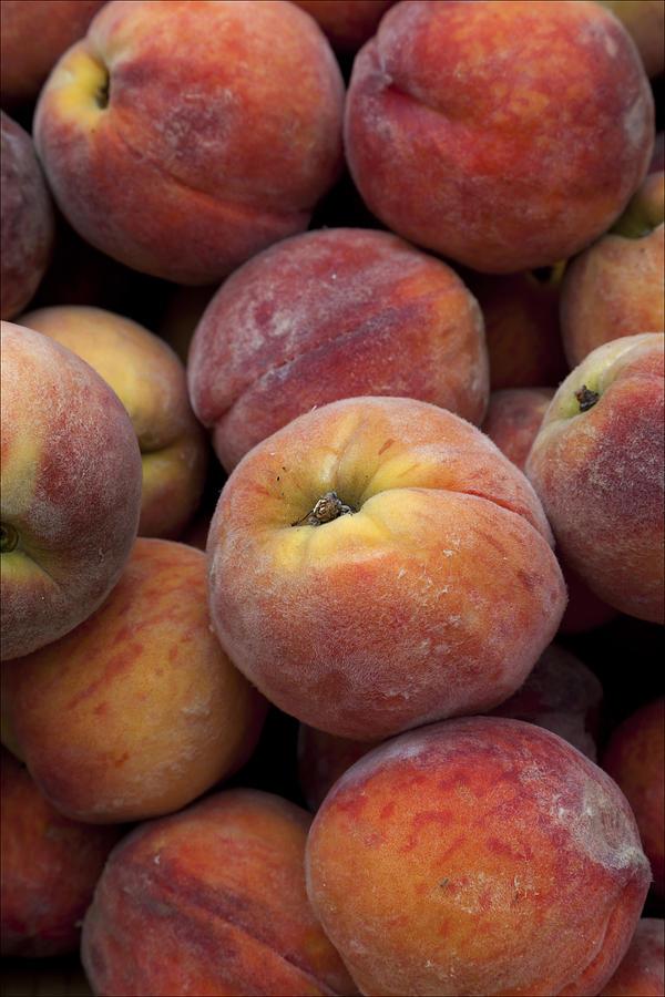 Peaches Photograph - Peaches 2 by Robert Ullmann