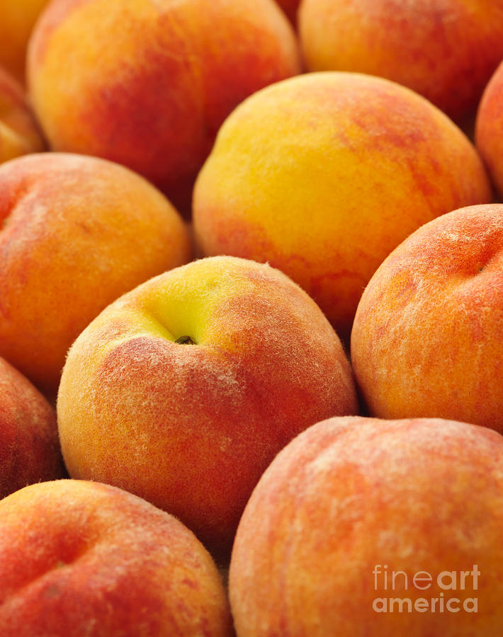 Peaches Photograph - Peaches Background by Elena Elisseeva