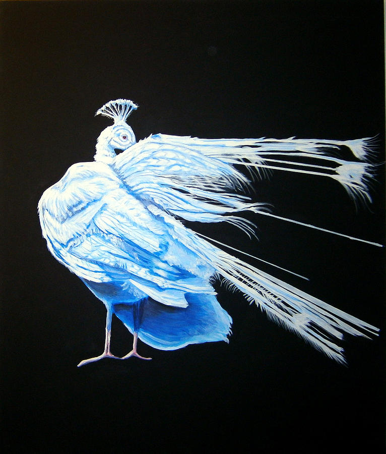 Peacock Painting - Peacock 2 by Chris Benice