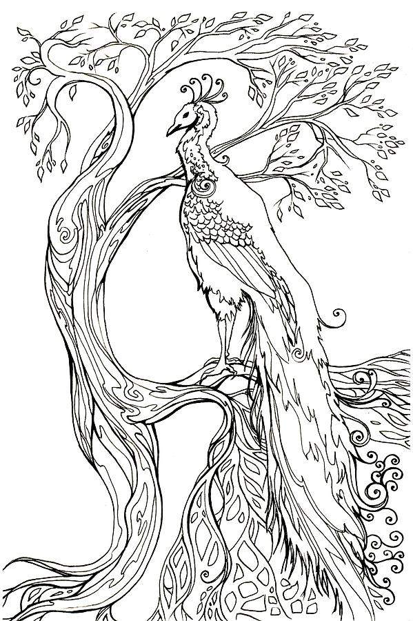 Peacock And Tree by Katherine Nutt