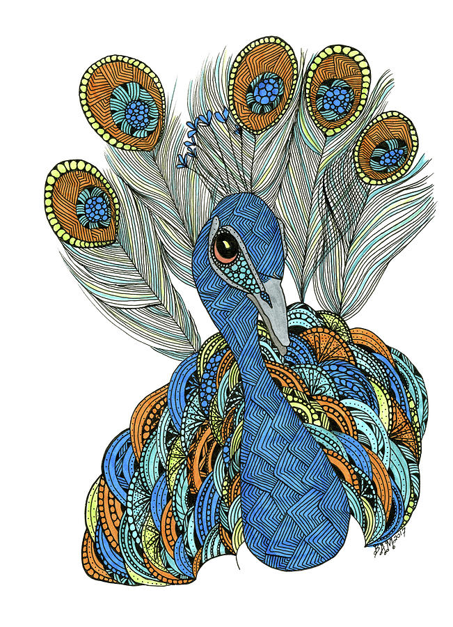 Peacock by Barbara McConoughey