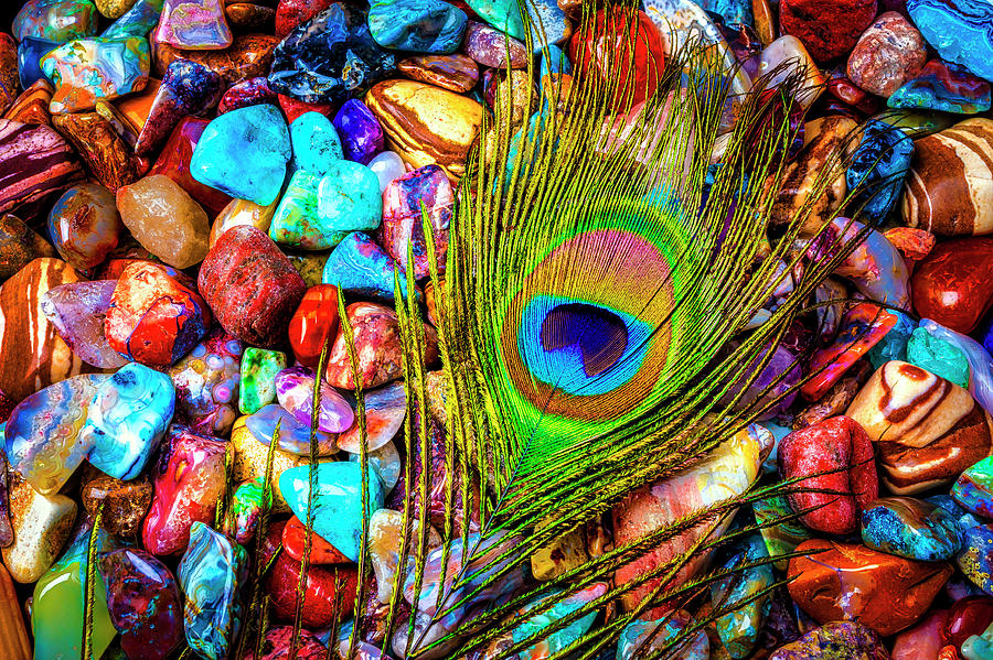Stones Photograph - Peacock Feather On Colorful Stones by Garry Gay