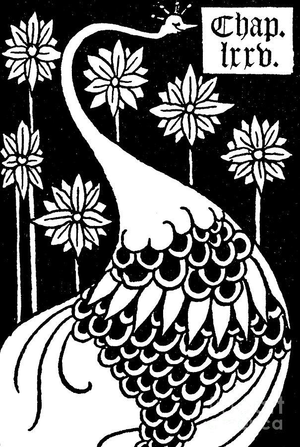 King Arthur Drawing - Peacock Illustration From Le Morte Darthur By Thomas Malory by Aubrey Beardsley