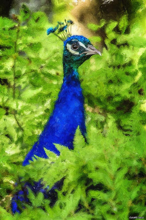 Peacock Photograph - Peacock by Ken Morris