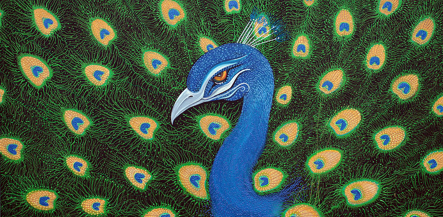 Abstract Painting - Peacock by Laura Barbosa