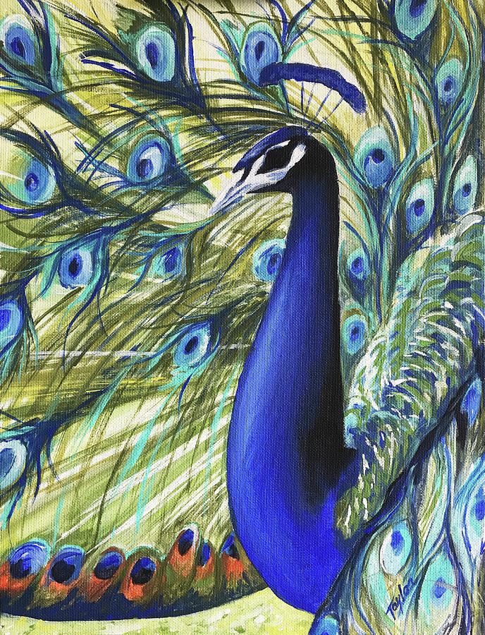 Peacock by Laura Taylor
