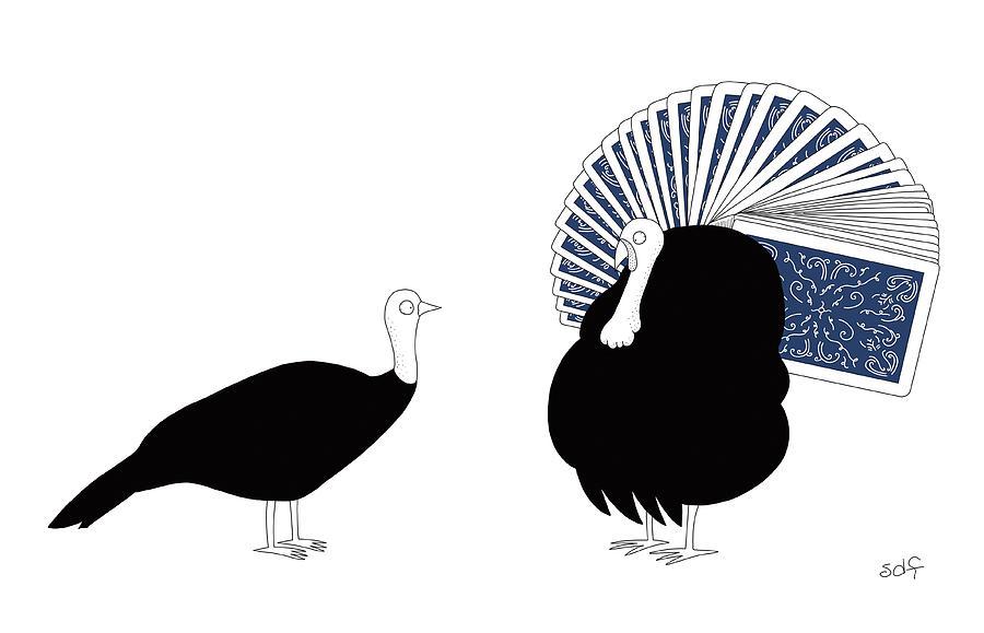Peacock by Seth Fleishman