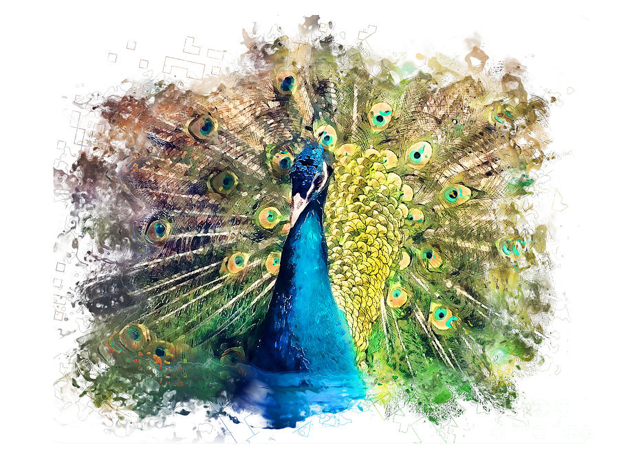 Peacock Watercolor Painting Painting by Justyna JBJart