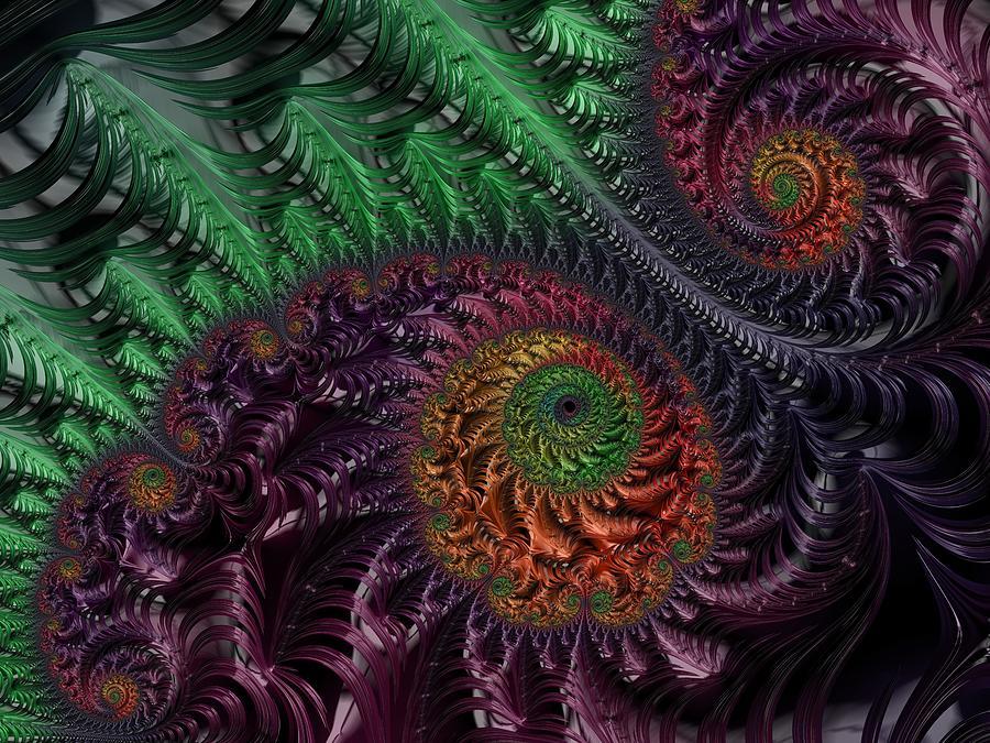 Peacock's Eye by Paisley O'Farrell