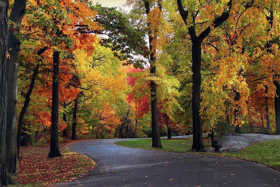 Peak Autumn Path Photograph