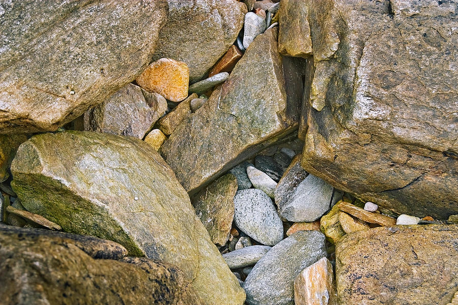 Snail Photograph - Peaks Island Rock Abstract Photo by Peter J Sucy