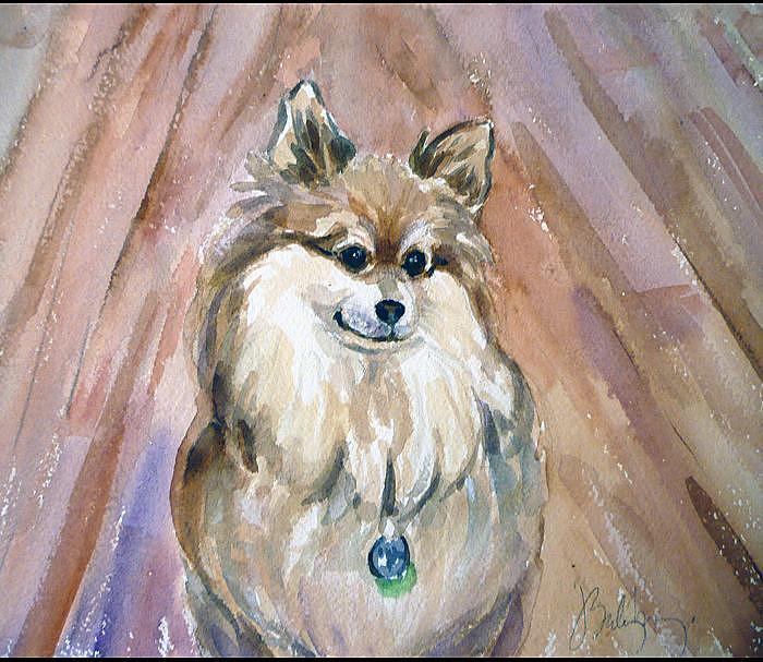 Pet Portraits Painting - Peanut by Jeanette Salzburg